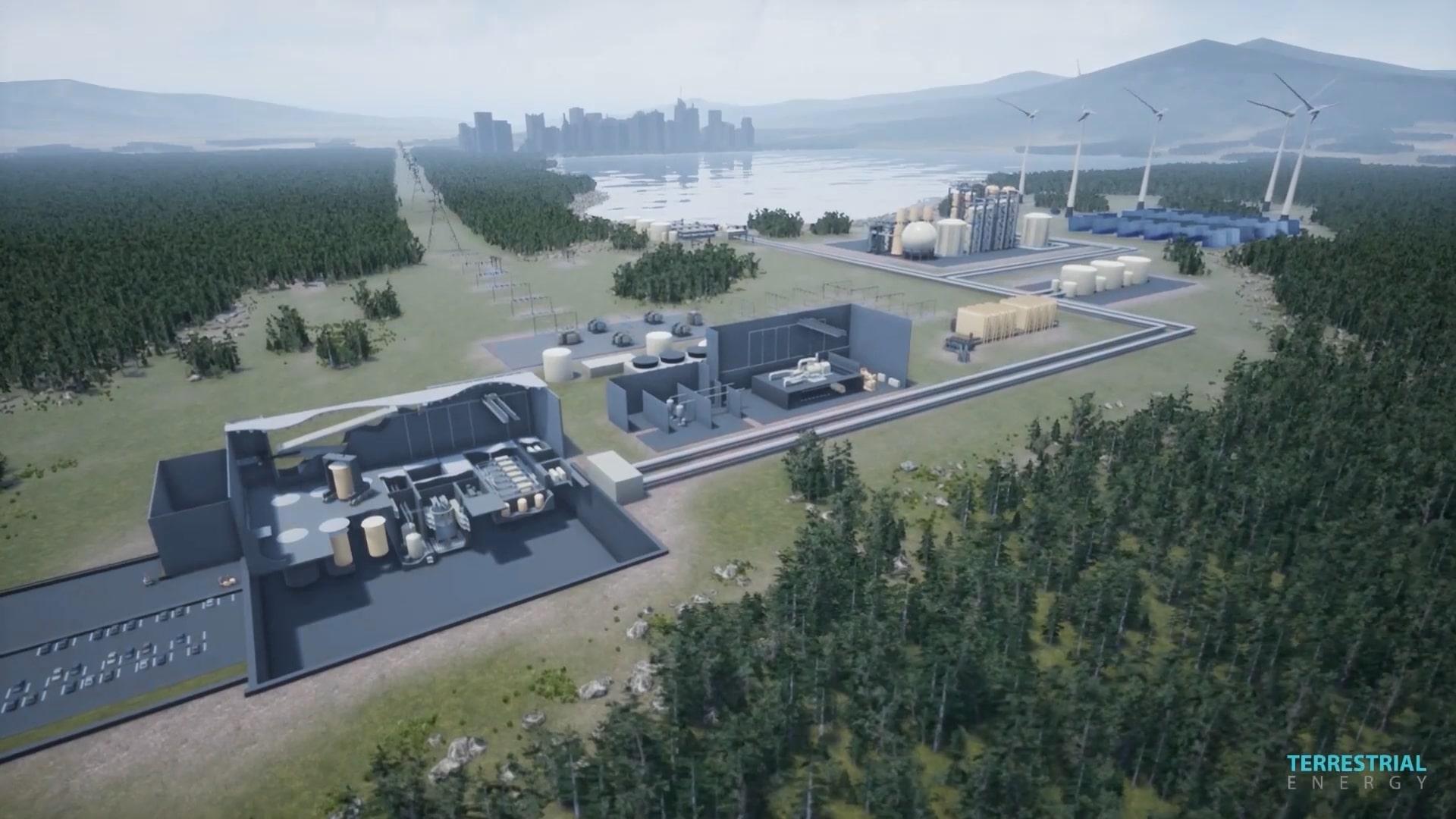 Terrestrial Energy: моделирование жидкосолевого ядерного реактора