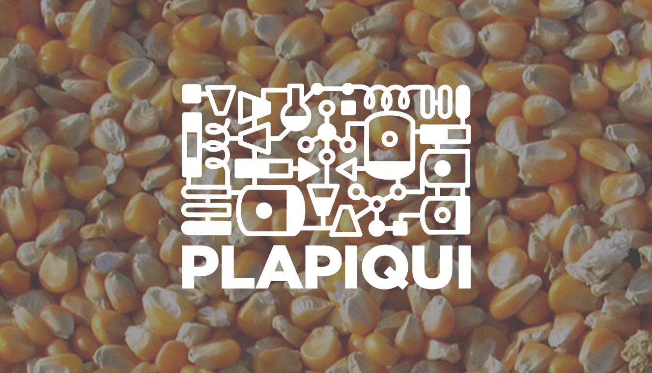PLAPIQUI использует Rocky DEM для расчетов поведения частиц в пищевой промышленности