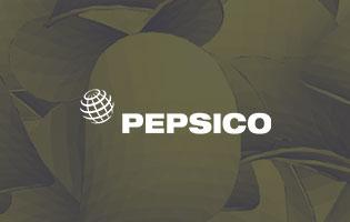 PEPSICO: виртуальное тестирование новых продуктов